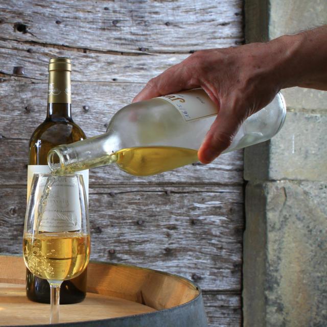 Une main serve du vin du Clos Guirouilh à Lasseube