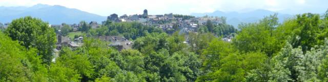 Vue sur le gave d'Ossau et sur le quartier Sainte-Croix d'Oloron Sainte-Marie
