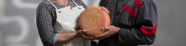 Un couple de producteurs de fromage de brebis et de mixte tient une tomme à 4 mains