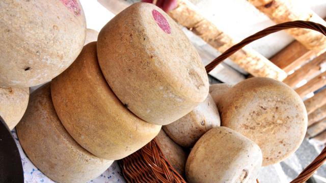 Quesos típicos de los Pirineos franceses