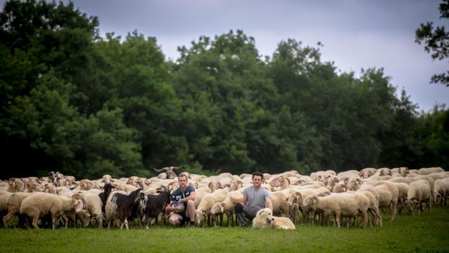 Producteurs du Gaec Mounet à Ogeu-les-Bains avec ses brebis et son fromage