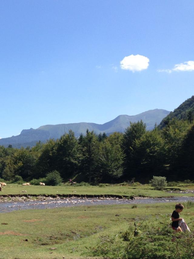 Groupe de personnes se repose sur l'herbe à coté des chevaux