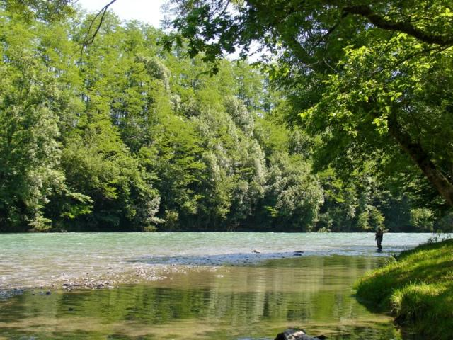 Pescador en un rio de Oloron