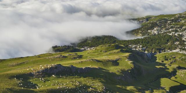 Vue de la station la Pierre Saint Martin en été, montagne et nuages