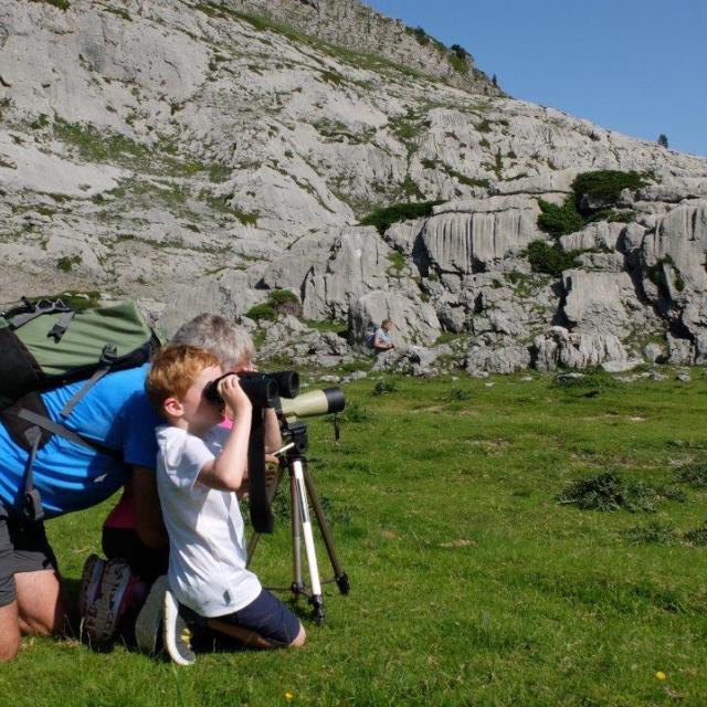 Randonneurs observent avec jumelles en montagne