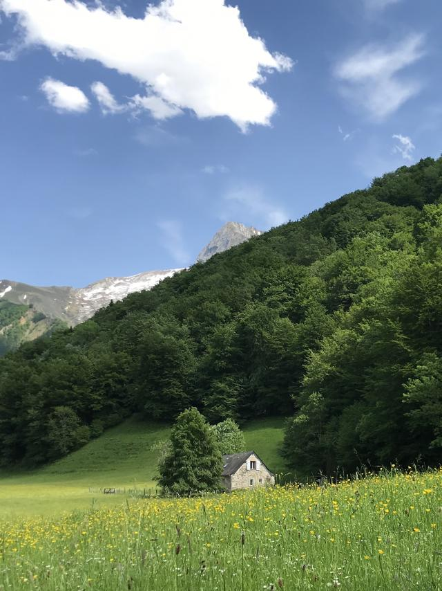 Grange Et Prairie Vallon D'aoulet Accous en Vallée d'Aspe, Pyrénées Béarnaises