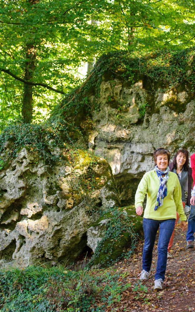 Randonnée En Forêt De Saint Gobain