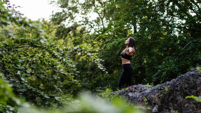 Forêt De Saint Gobain