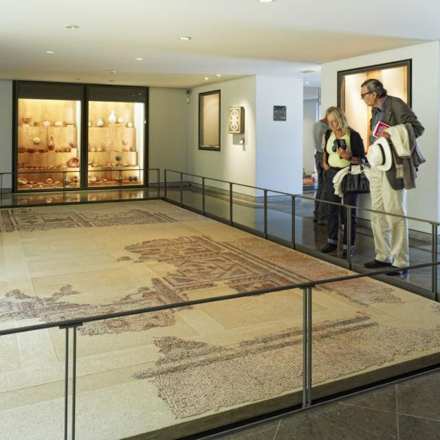 Mosaique du Musée Fenaille à Rodez