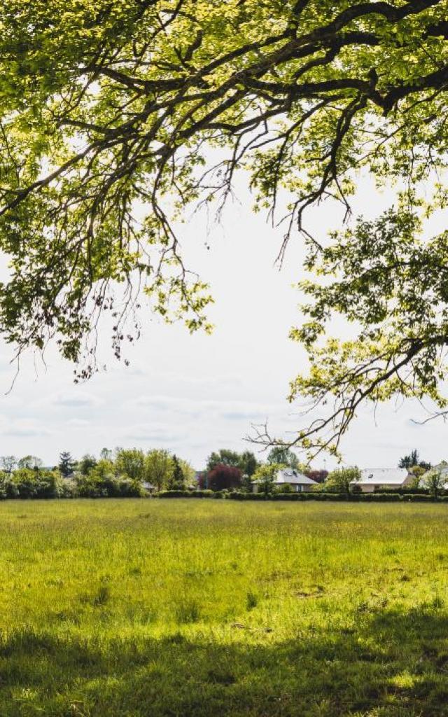 Une promenade à Nostre-Seigne à Onet-le-Château