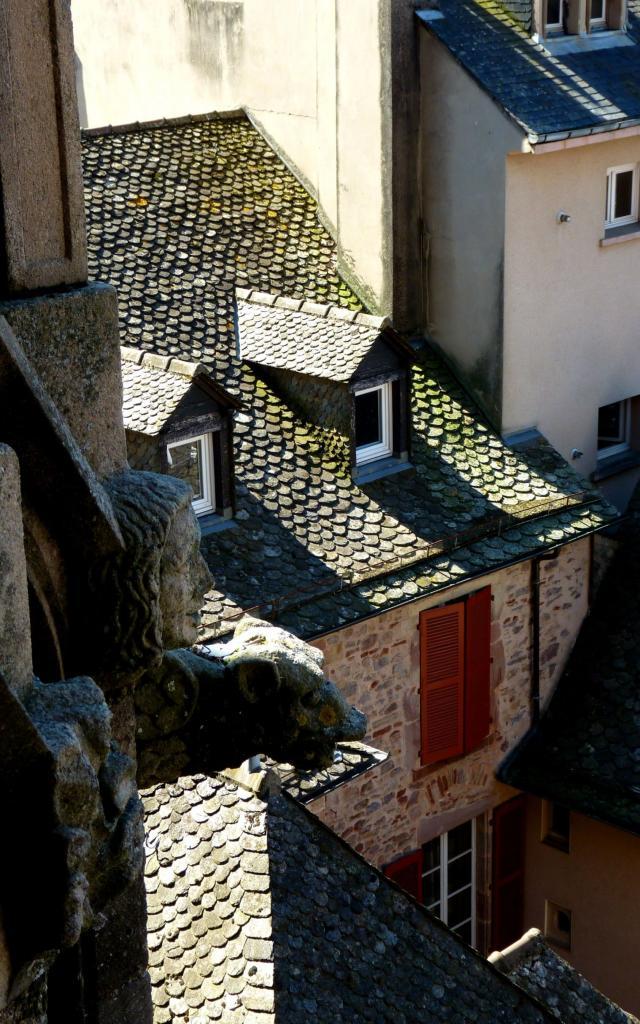 Sculpture et gargouille de la cathédrale de Rodez