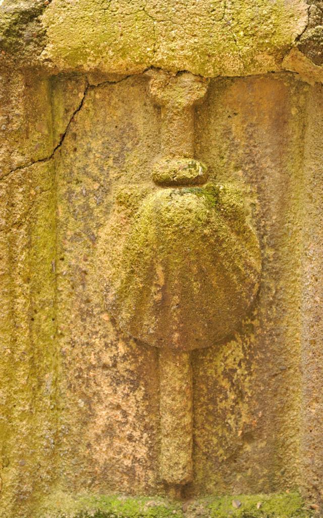 Coquille Saint-Jacques du puits de la maison dite Canoniale