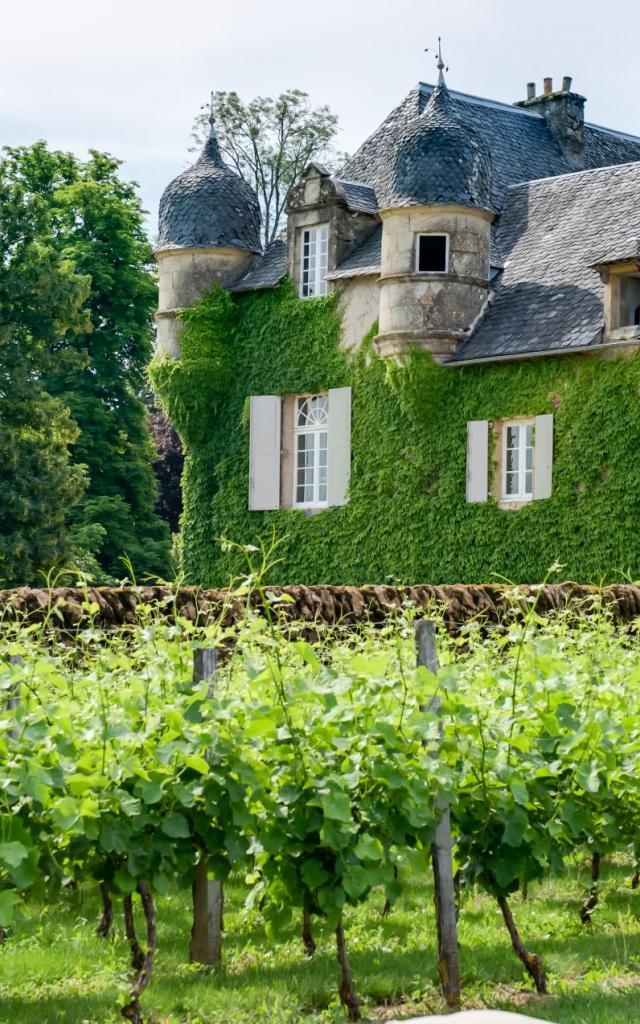Le Château de Labro et ses vignes