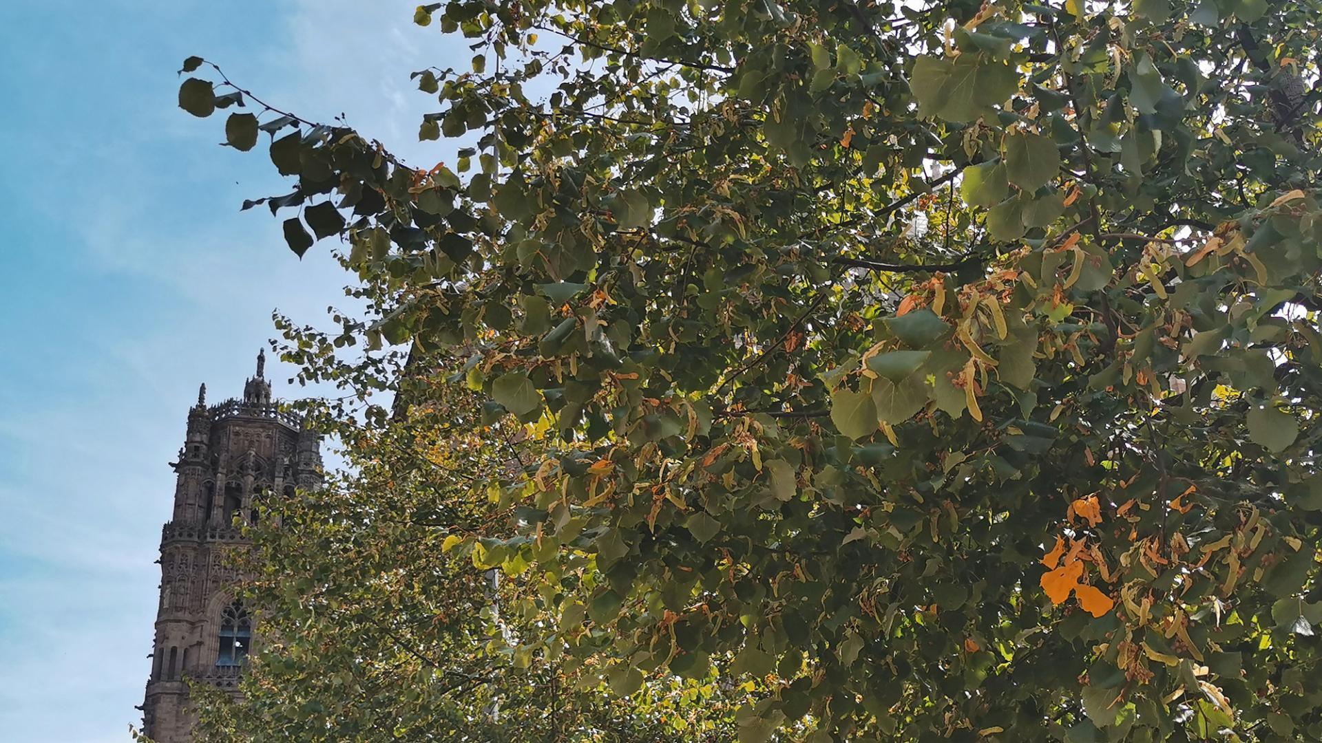 Le clocher à l'arrivée de l'automne