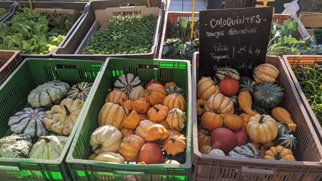 Etal du marché à l'automne