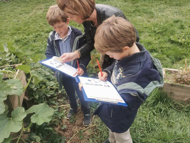 Les enfants à la recherche de la gargouille