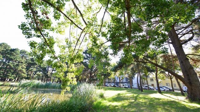 parc-paysager-christian-robert-ville-de-saint-nazaire4.jpg