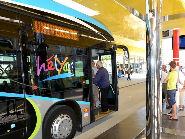 bus-hlycedominique-macel.jpg