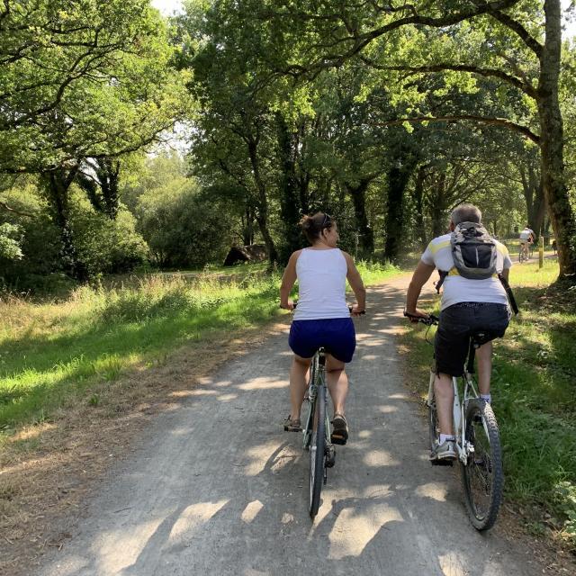 Balade à vélo en Brière