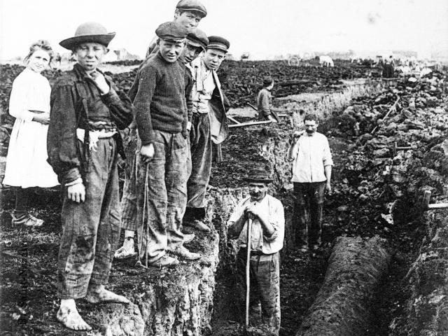 Extraction de la tourbe et découverte d'un tronc de morta. Iconographie Ancienne