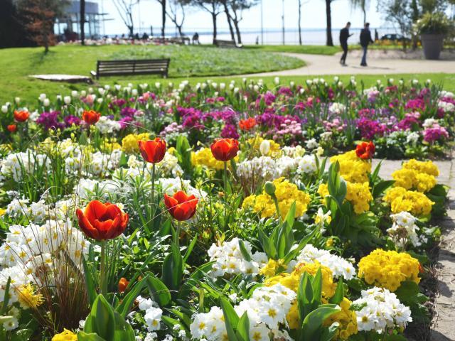 jardin-des-plantes-couleurs-printemps.jpg
