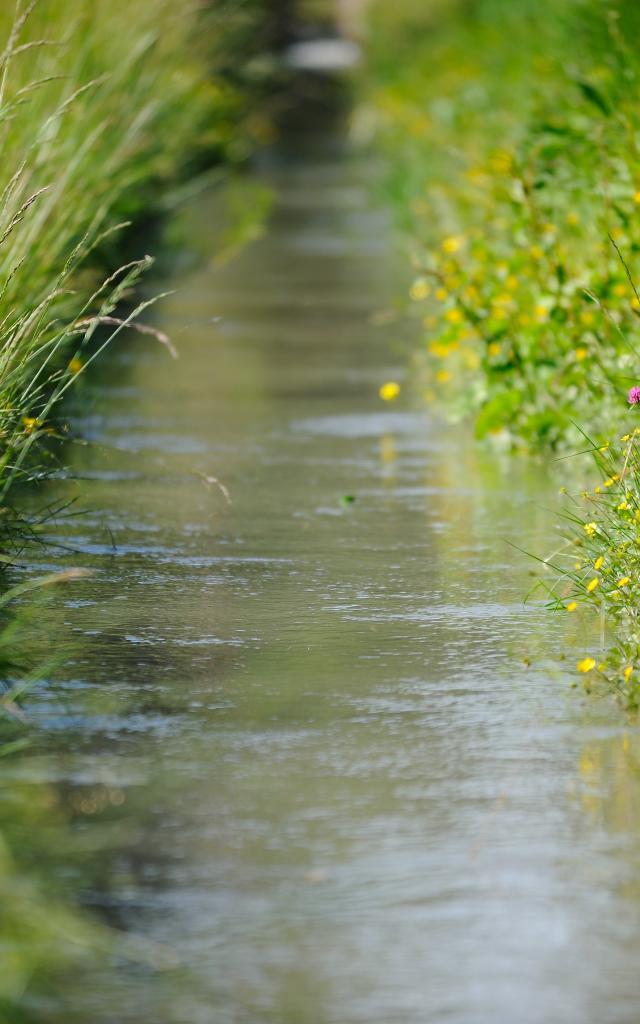 Chemin de terre à travers la plaine de la Crau. www.ericfabrer.fr - contact@ericfabrer.fr - + 33 6 62 36 20 91 - Haute définition sur demande.