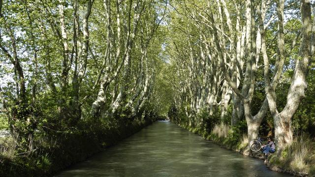 Cyclisme dans la plaine de la Crau, le Canal de Craponne. www.ericfabrer.fr - contact@ericfabrer.fr - + 33 6 62 36 20 91 - Haute définition sur demande.