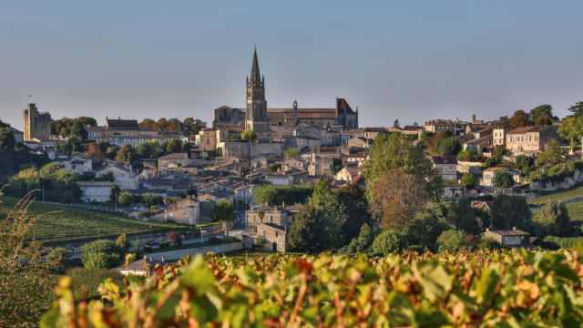 Saint-Emilion ses vins et ses vignobles