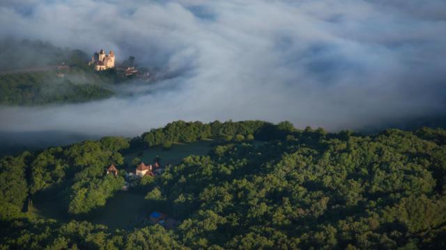Forêt périgourdine dans la vallée de la Dordogne