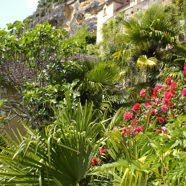 Jardin exotique de la Roque-Gageac