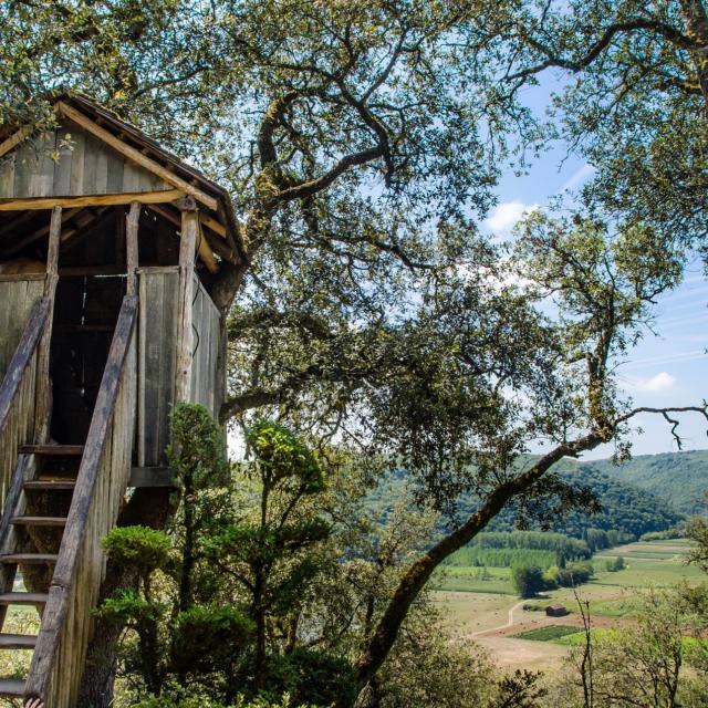 Hébergements insolites - cabanes dans les arbres