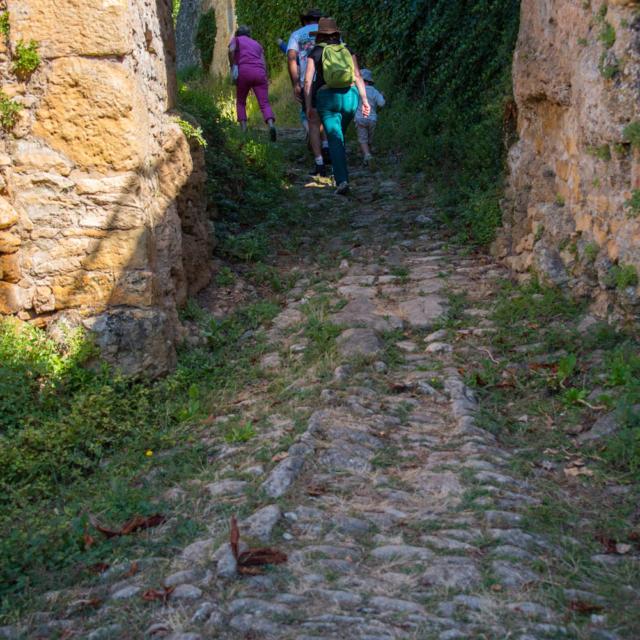 Visite découverte de Saint Vincent de Cosse