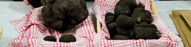 Marchés primés - Fête de la truffe à Sarlat