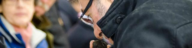 Les secrets de la truffe - Fête de la truffe à Sarlat