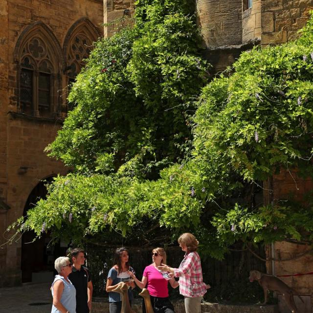 Personalised guided excursion in Sarlat