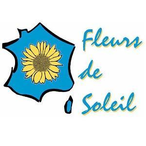 Logo Fds2