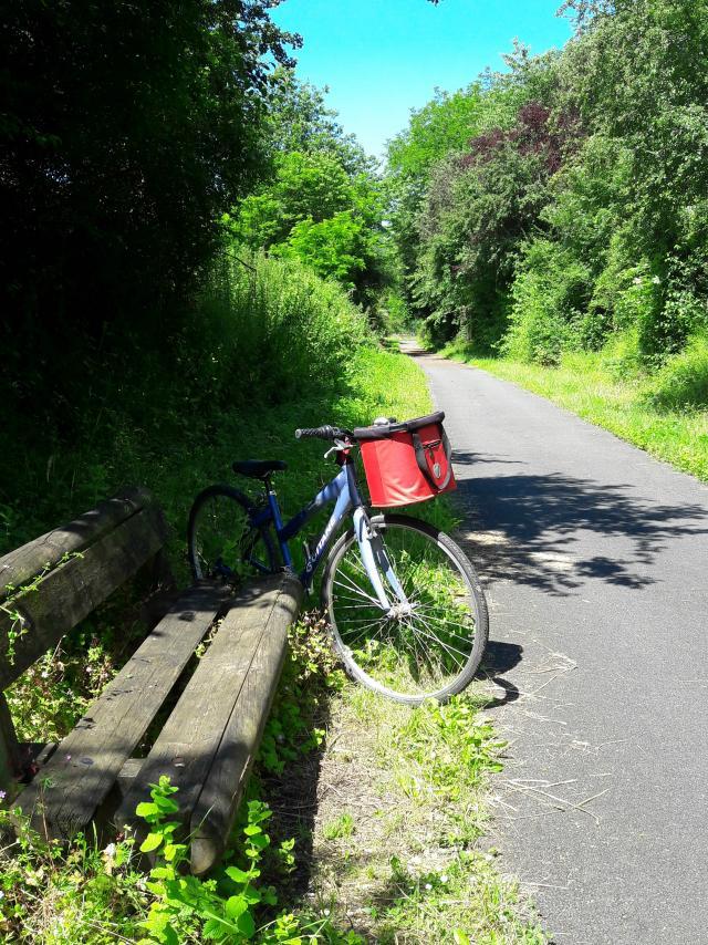 Randonnée à vélo_voie verte