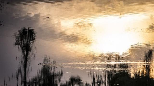 2017 07 Milieux Naturels La Grande Noe ©jean Pierre Sageot (4)