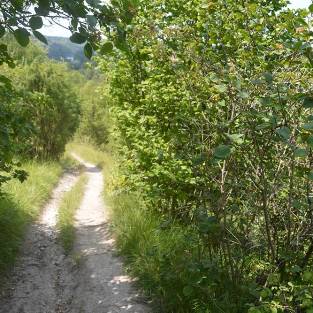Chemin de randonnée sur les coteaux d'Heudebouville en Seine-Eure