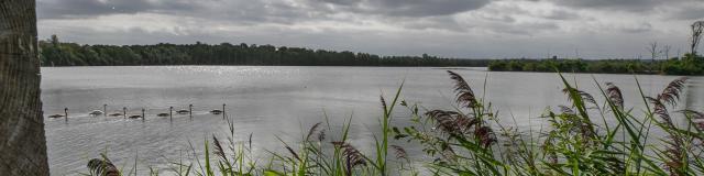 Reserve Ornithologique 007 08 2018