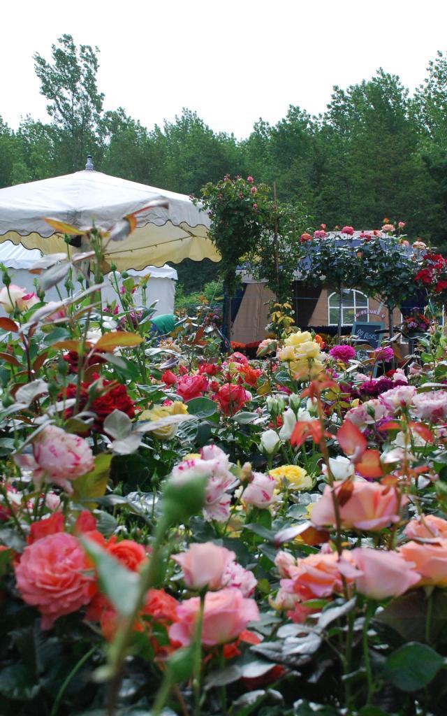 2007 05 Salon Fleurs Et Jardins (4)
