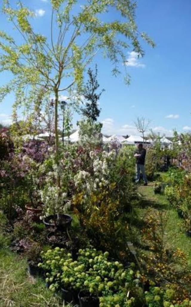 Salon Fleurs Et Jardins 2