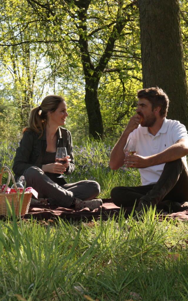 Pique-Nique en couple au Bois Harriez