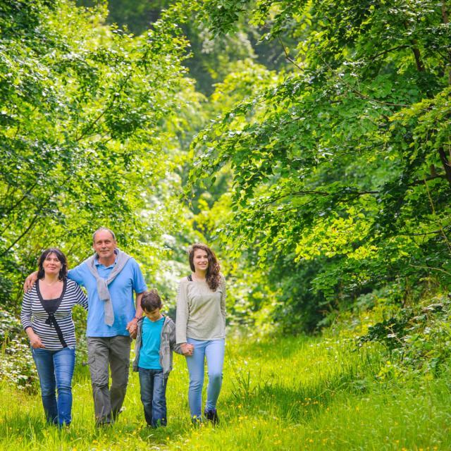 Promenade familiale en forêt < Forêt de Retz