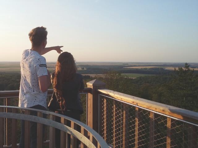 Tour d'observation Mangin < Forêt de Retz