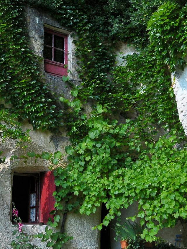 La Magnanerie, maison troglodytique en Val de Loire