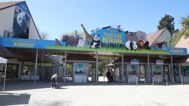 Billetterie Tarifs Zoo Beauval