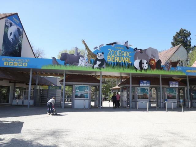Billetterie Tarifs Zoo Beauval