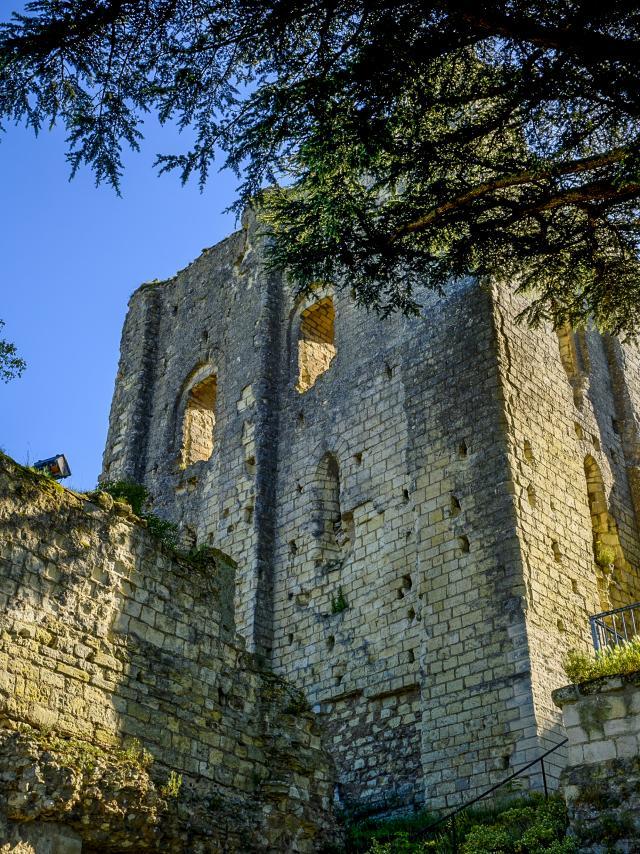 Les Châteaux de la Loire - Donjon de Montrichard Val de Cher