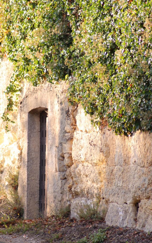 Troglodyte à Châteauvieux